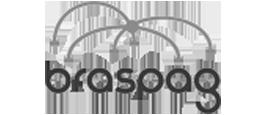 logo-braspag