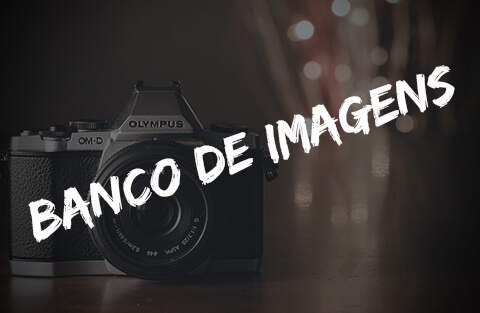 Por que usar banco de imagens para seus projetos?