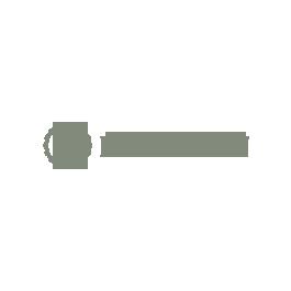 Desenvolvimento de Site Flávio Balan