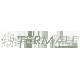 Google Adwords e SEO para Termall Refrigeração